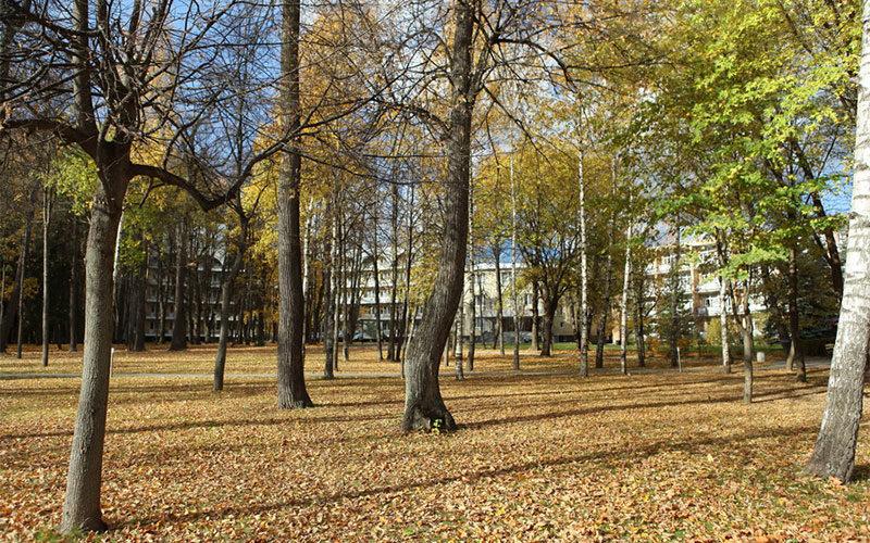 Парк Отель Воздвиженское 4*